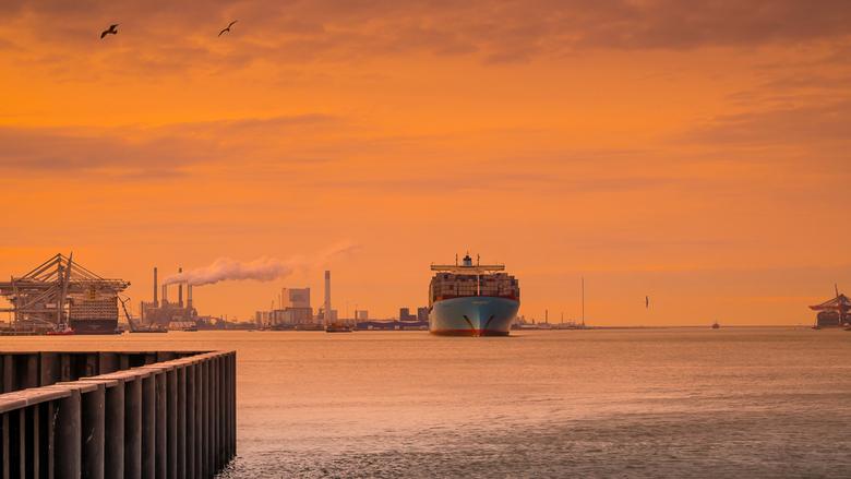 Delta Rotterdam Maasvlakte - Uitzicht vanaf pistoolhaven naar Europahaven/Yangtzekanaal