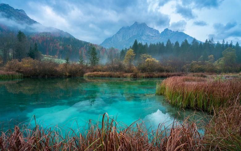 Het Zelenci natuur reservaat - Een kalme morgen in het Zelenci Natuur reservaat in Slovenië. Dit prachtige stukje natuur bevind zich slechts een paar