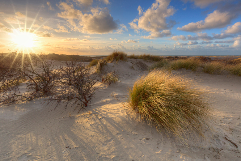 Wuthering Dunes