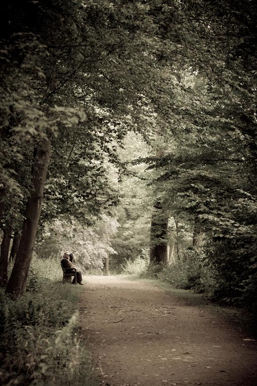 Oude vertrouwde ... - Gewoon, omdat het zo voelde toen ik er wandelde.