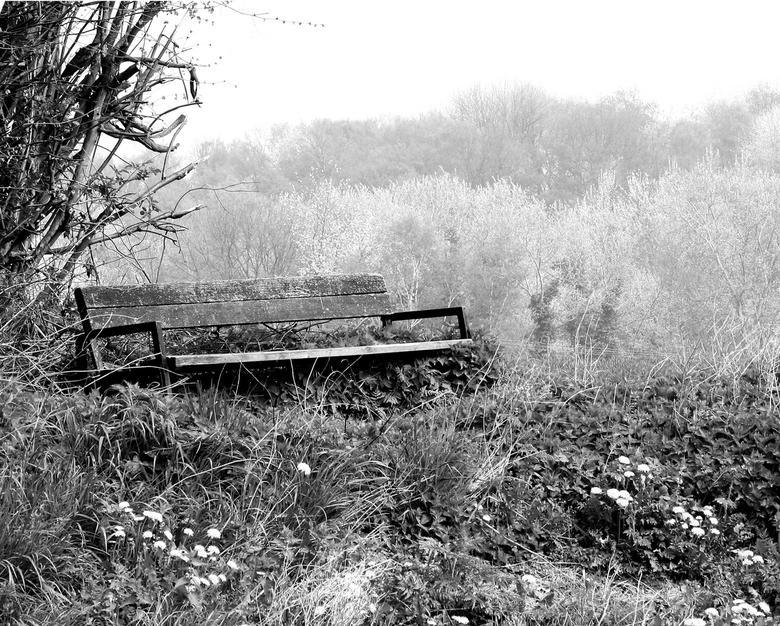Eenzaam, achterblijven - Eenzaamheid