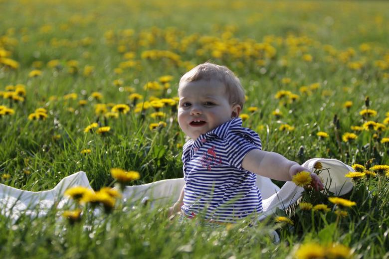 Paardebloemen - Vivian in een veld vol paardebloemen.