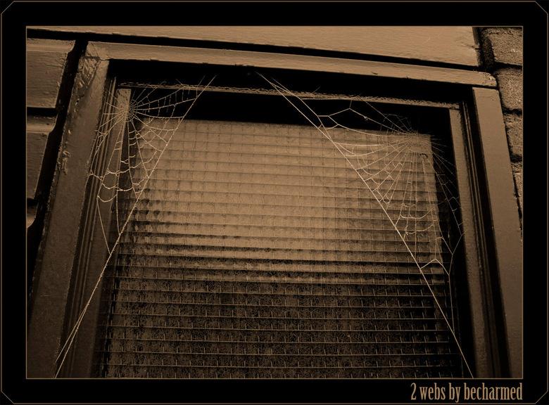2 webs -