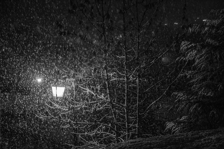 Zwart wit van sneeuwval bij nacht  -