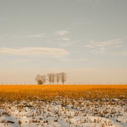 Winter-Lente-Winter