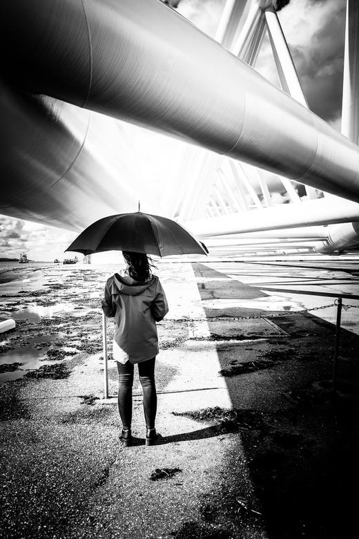 Umbrella Ella -