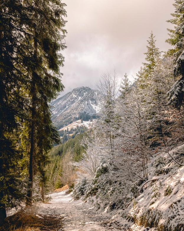 Frankrijk - Alpen - La Chapelle d'Abondance - 35 mm RF f1.8<br /> <br /> F/11<br /> 1/200