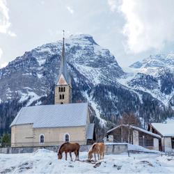 kerkje Bergun Zwitserland met grazende paarden
