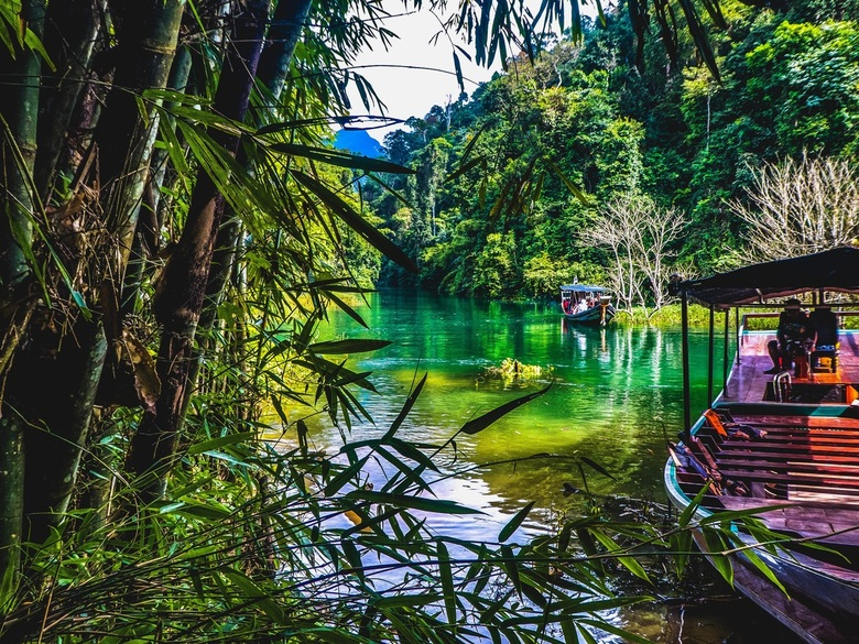 Khao sok jungle hike!