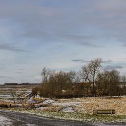 Winters Tholen panorama