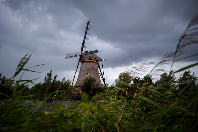 Early Autumn Windmill_ - Early Autumn Windmill