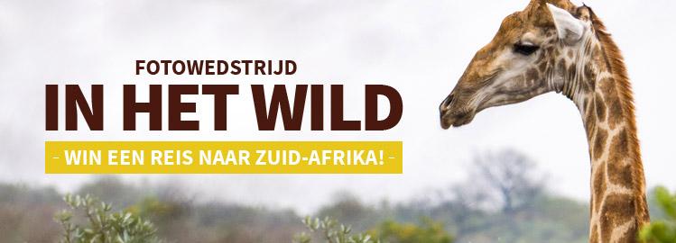 fotowedstrijd: In het wild