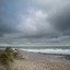 strand bij 'herdijkte zwarte polder