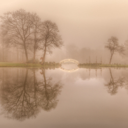 Verdwalen in de mist..
