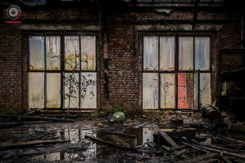 Room with a view.  - Twee ramen in een verlaten fabriek.