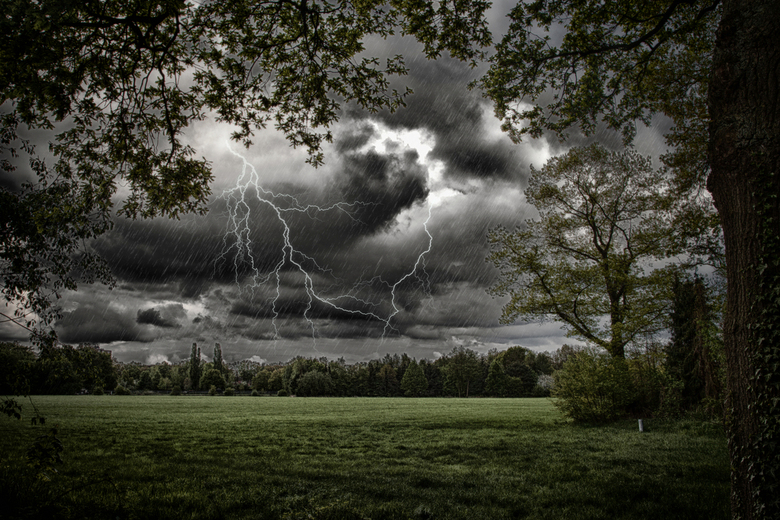 ALARUM - I go where the sound thunder is<br /> <br /> - Alfred M. Gray
