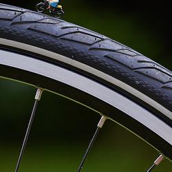 MINI - Op stap met de fiets