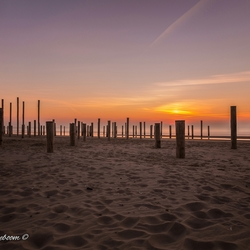 Sunset Palendorp Petten