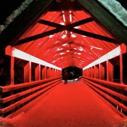 Bridge during the night
