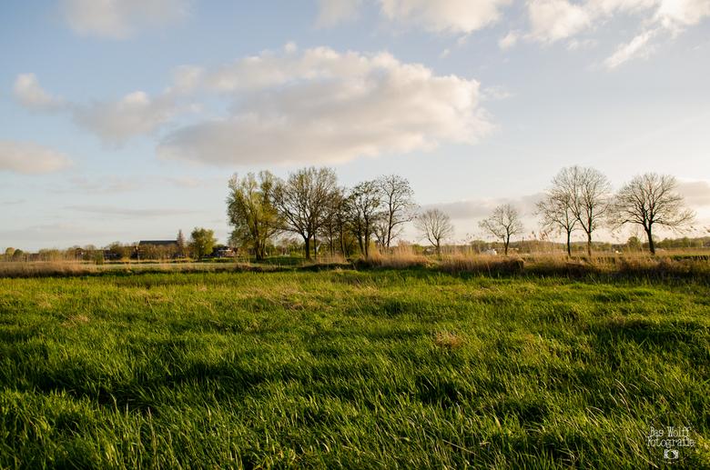 Uiterwaarden IJssel - Uiterwaarden van de IJssel gefotografeerd in Hattem.