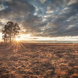 Zonsondergang in het veen