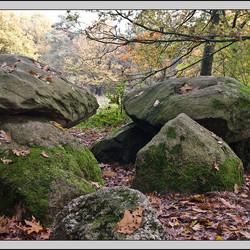 Stenen in het bos.