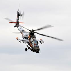 The Hawk (Apache Demoteam)