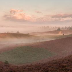 Posbank fog