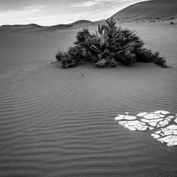 Namibian Sand