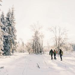Winterwandeling.
