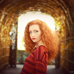 Autumn Redness
