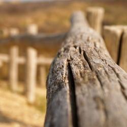 Het houten hek