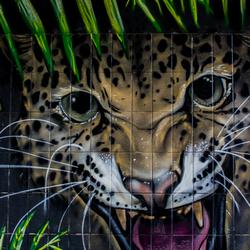 Graffiti Leopard