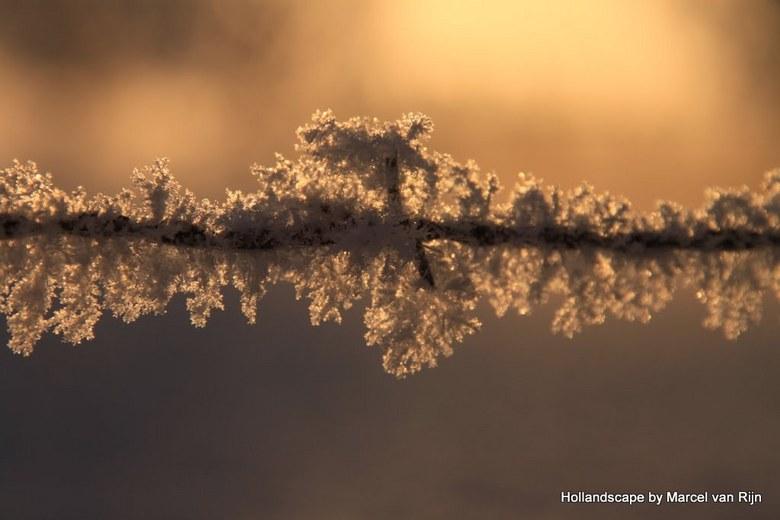 Prikkel Rijp - Foto afgelopen winter genomen toen het zo ontzettend had gevroren.<br /> Dit prikkeldraad zat onder de rijp ,de zon kwam net op .<br /