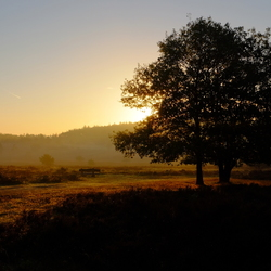 Morgenstimmung bij Beekbergen