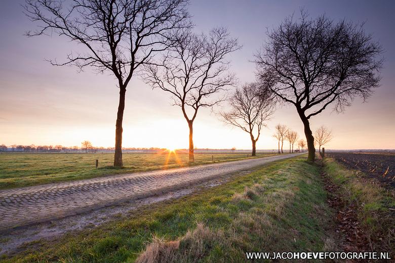 De morgenstond heeft goud in de mond.  - Genomen op 24 februari 2014 in Staphorst.