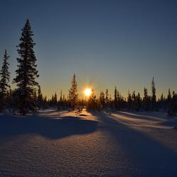 Zweden_Lapland