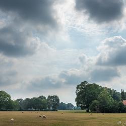 Boederij in Barneveld