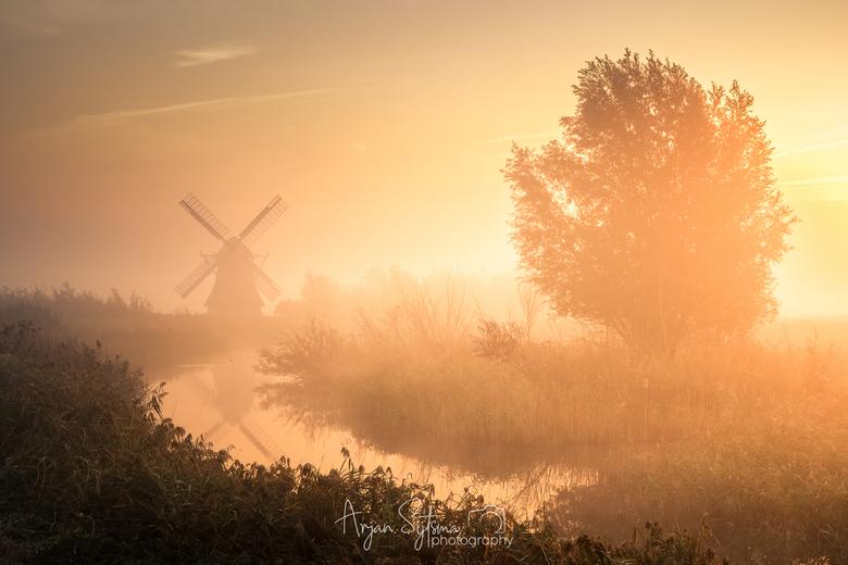 Misty sunrise... -
