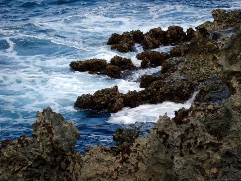 Watamula - Watamula is een natuurgebied op Curacao. Alleen hier kun je nog zien dat het eiland is ontstaan uit een vulkaan uitbarsting.