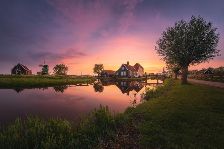 Good Morning Holland!