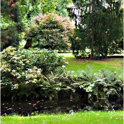 Een van de tuinen van Kasteel Vosbergen.