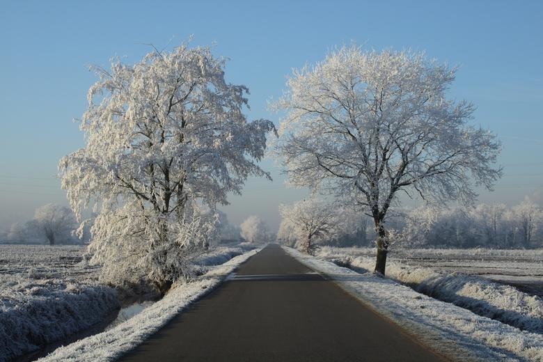 Winterzicht -