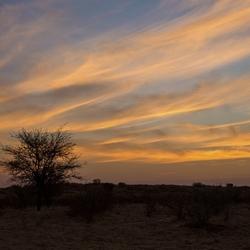 Zuid-Afrika 107