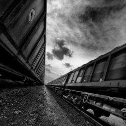 wagons b/w