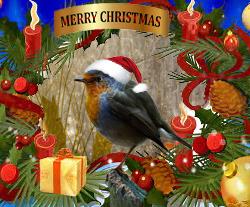 Merry Chirstmas van uit Gelderland