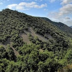 Nationaal park Serra de la Calderona.