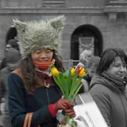 Tulpen uit Amsterdam 2