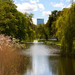 Rotterdam - Groen!