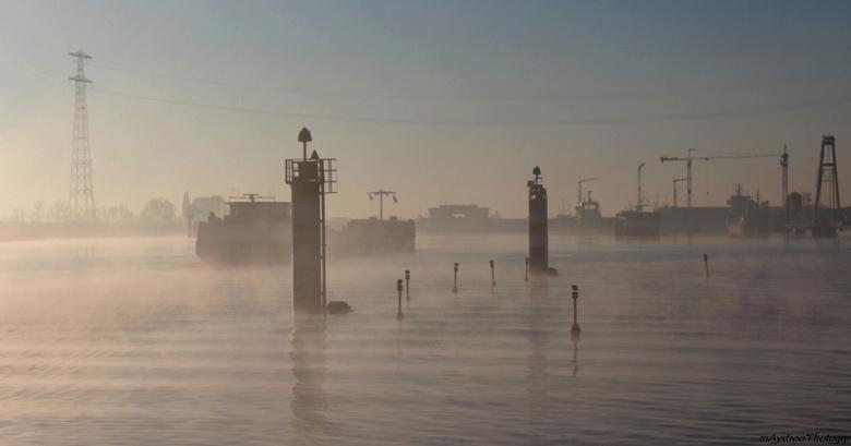 de mist in - in de omgeving van hansweert deze morgen bij opkomend zonnetje